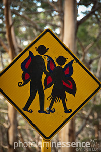 Margaret River fairies, WA, Australia
