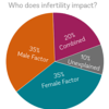Who does Infertility Impact Pie Chart