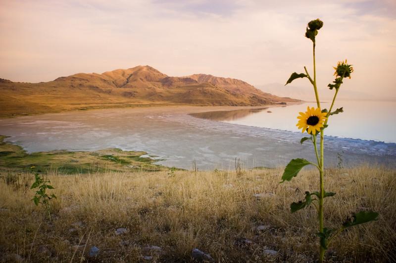 Weber Davis Photo-White_Rock_Bay_Sunset