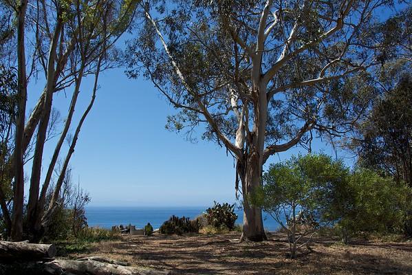 Douglas Family Preserve Santa Barbara CA
