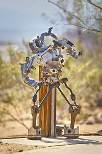 Joshua Tree Robot. More pics here http://www.stevensharp.photos/Public/USA-2016