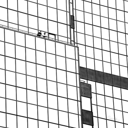 BB&T Building Detail, B&W