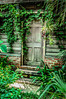 Overgrown Entrance