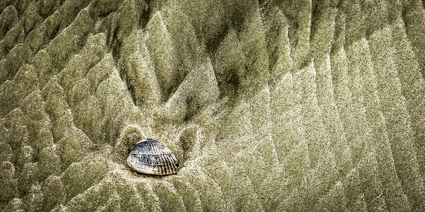 Shell and Sand Formation
