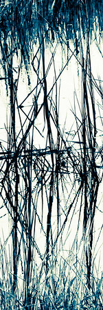 Marsh Grass #1, Stylized