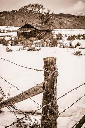 Rugged Fence and Cabin, Sepia