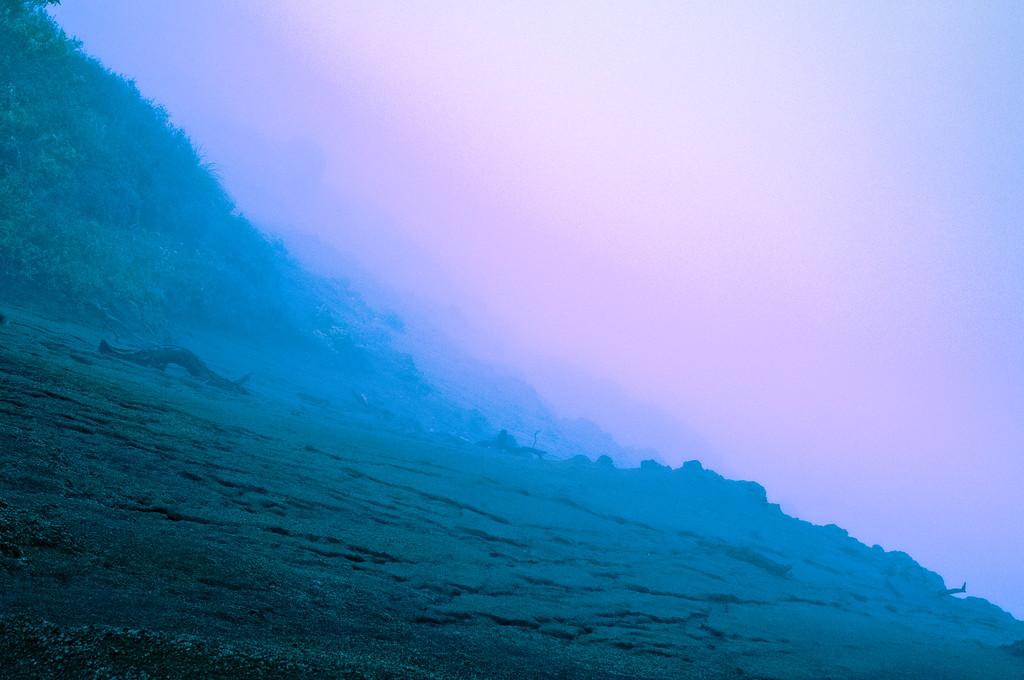 Cliff Edge in Fog #2
