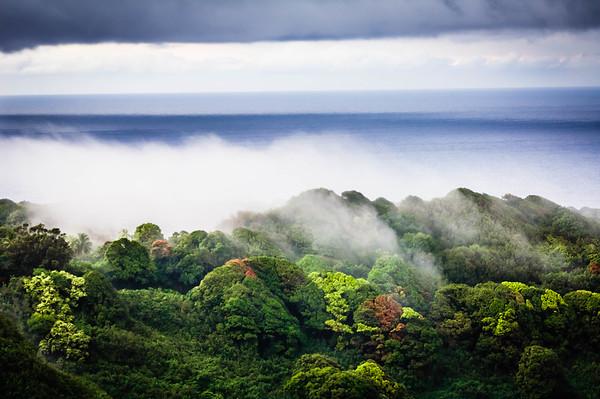 Fog Clears the Ridge