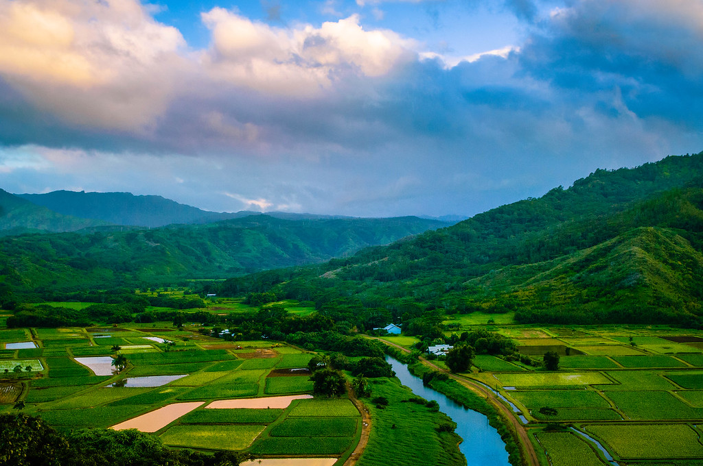 Hanalei River Valley #1