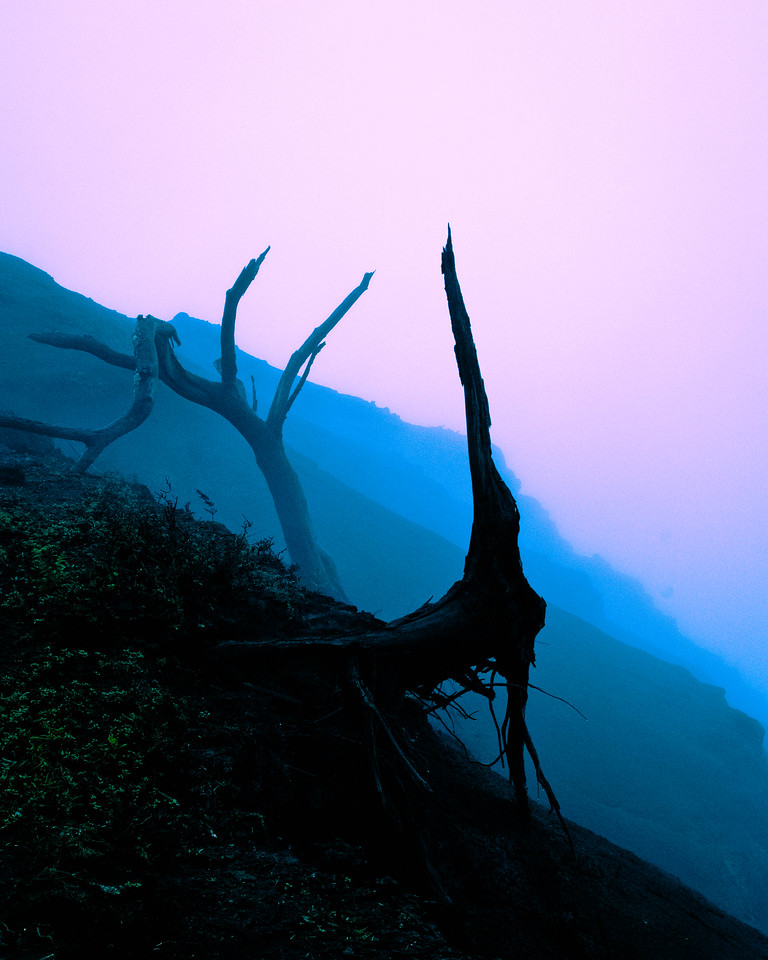 Cliff Edge in Fog #3
