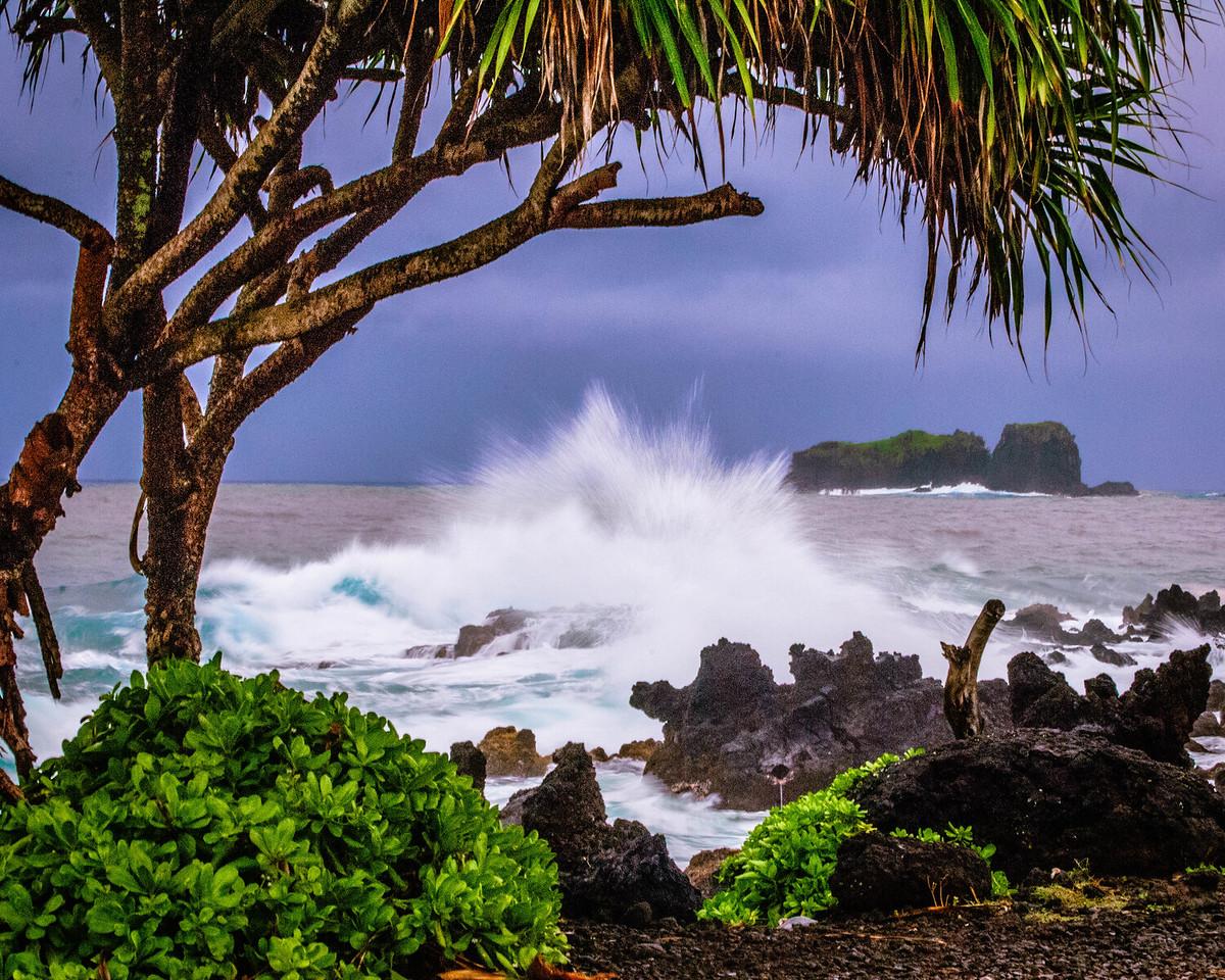 Tree and Crashing Wave