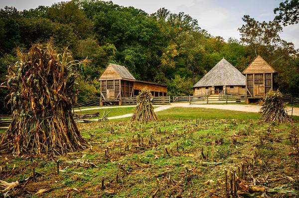Corn Field and Barns
