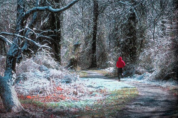 Snowy Day Runner