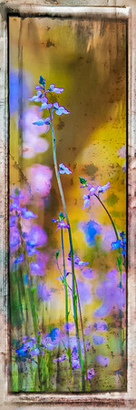"Wildflower ""Painting"" #3"