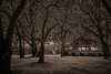 The Guest House and Winter Rye Grass, Monotone