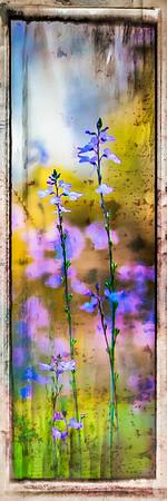 "Wildflower ""Painting"" #2"