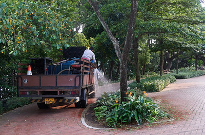 Very efficient method to water the plants at Fort Canning Park