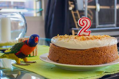 Happy Birthday Little Captain!
