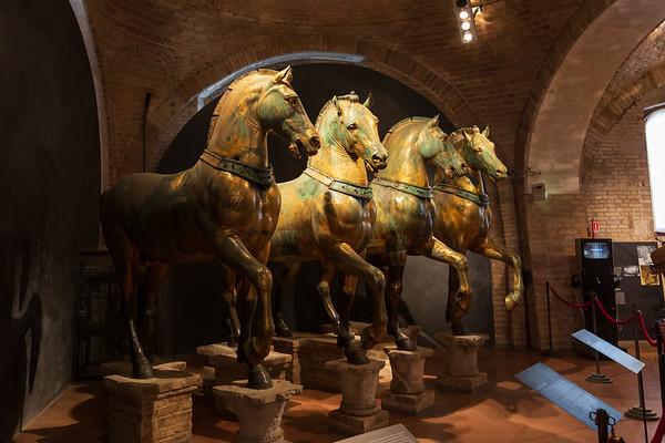St. Marks Horses