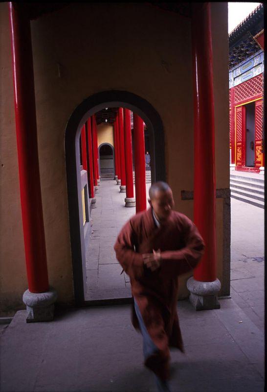 A monk in a temple in Wuhan, Hubei Province.