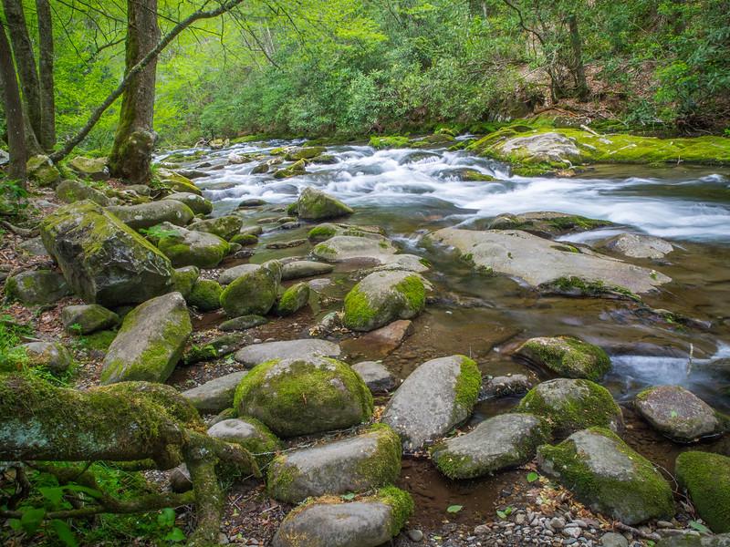 Oconaluftee (By the River), Great Smoky Mountain National Park, North Carolina
