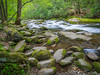 Oconaluftee (By the River), Great Smoky Mountain National Park, North Carolina