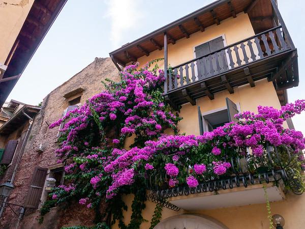 Flowery house | Torri del Benaco, Veneto, Italy