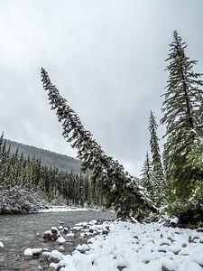 Snowy Jasper NP