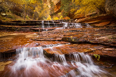 Cascade Falls, Subway, Zion National Park, UT