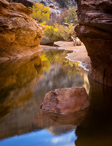 Kachina Bridge, Natural Bridges National Park, UT