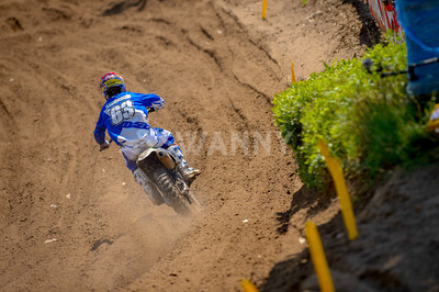 ANDERSON-D_2013_SOUTHWICK_SWANBERG_4881