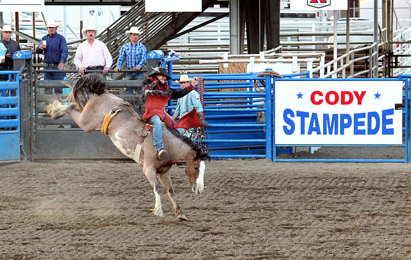 A day at the rodeo. Cody, Wyoming.<br /> Bare bronc rider in for a wild ride!