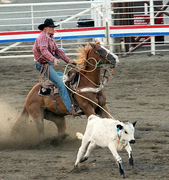 A night at the rodeo. Cody, Wyoming.<br /> Calf roping.