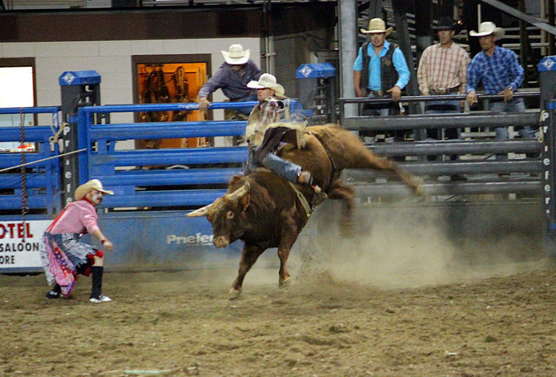 A night at the rodeo. Cody, WY.<br /> Bullrider in action.