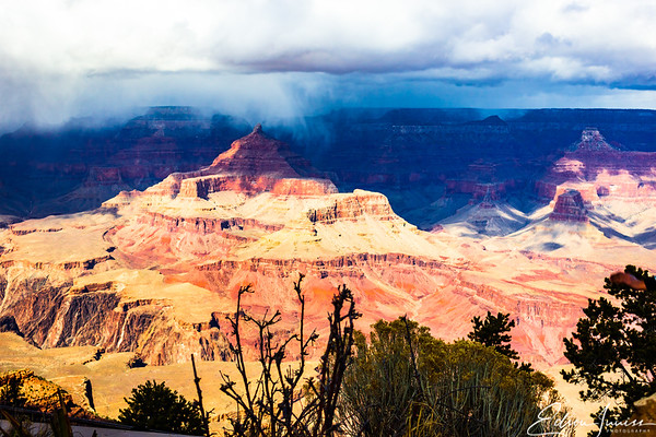 Grand Canyon National Park #2