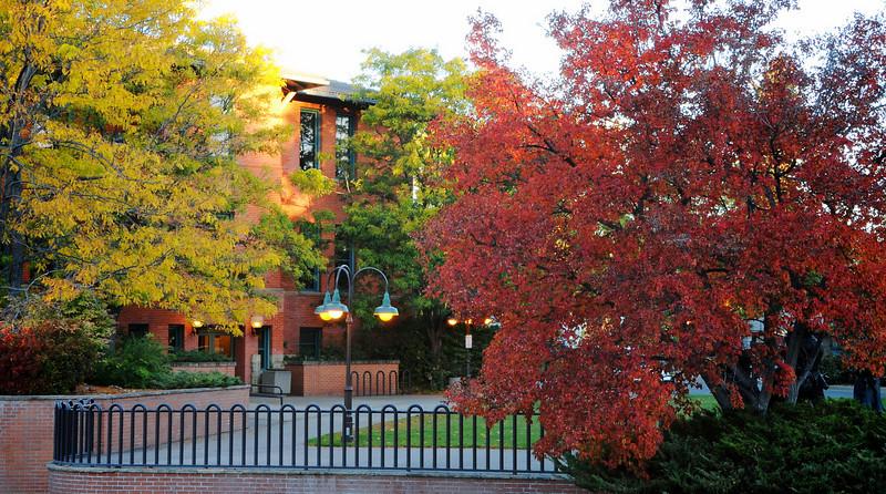 Lights & Color - Civic Center Plaza - Loveland, CO