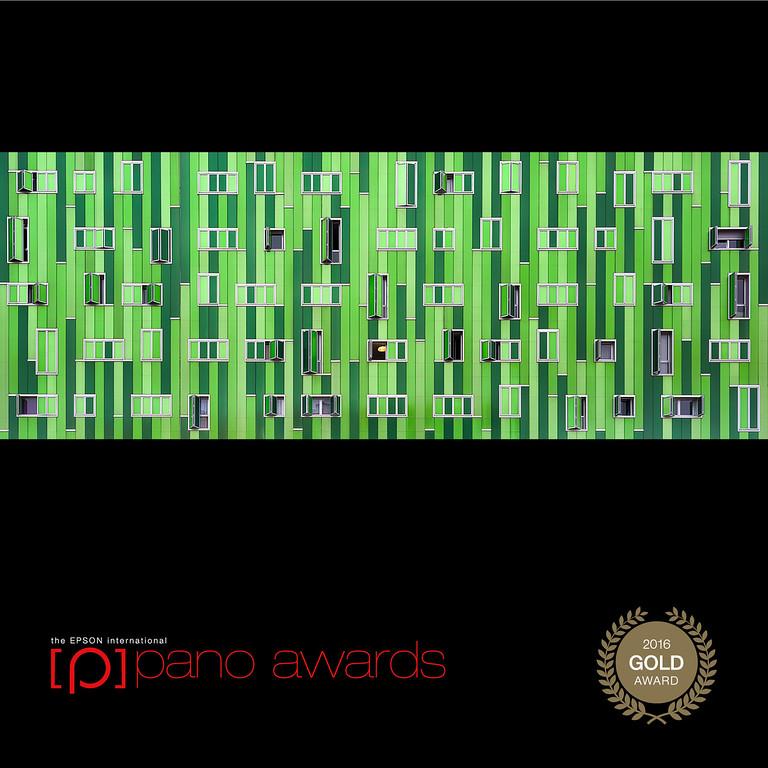 The Epson International Pano Awards Gold Award 2016