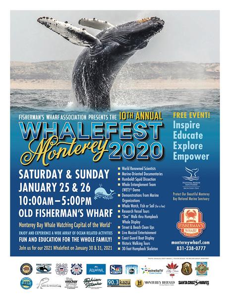 Whalefest!
