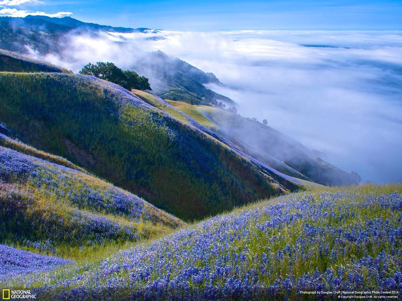 Above Big Sur