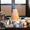 ali+derek_wedding_1470