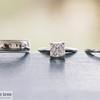 nicole grant_wedding_0044
