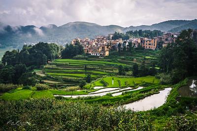 Rizières en terrasse de Yuanyang