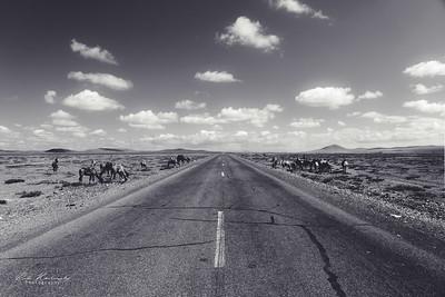 Sur la route pour le Gobi