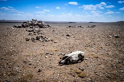 Desert de Gobi