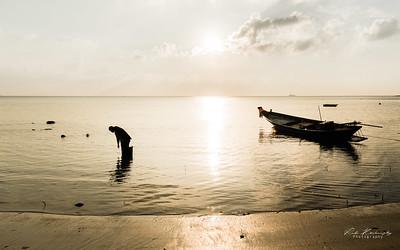 Seashell fisherman
