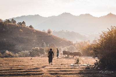 Myanmar country side