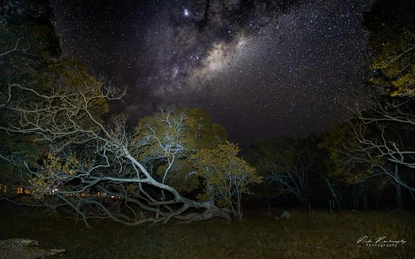 Voie lactée en Nouvelle Caledonie