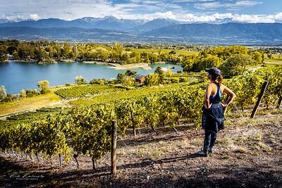 Vignoble de Savoie