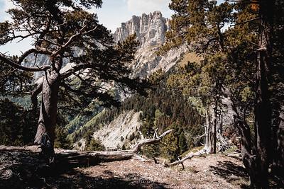 Bivouac-Gd voie Mont Aiguille 21 mai 2020  IMA02101