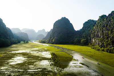 Vietnam 18 février 2019  DSC07194